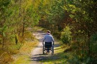 wheelchair accessible trails